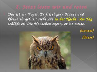 2. Jetzt lesen wir und raten Das ist ein Vogel. Er frisst gern Mäuse und klei