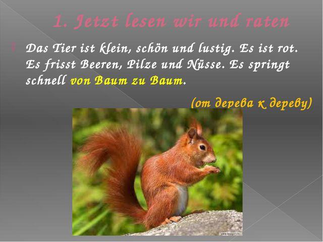 1. Jetzt lesen wir und raten Das Tier ist klein, schӧn und lustig. Es ist rot...