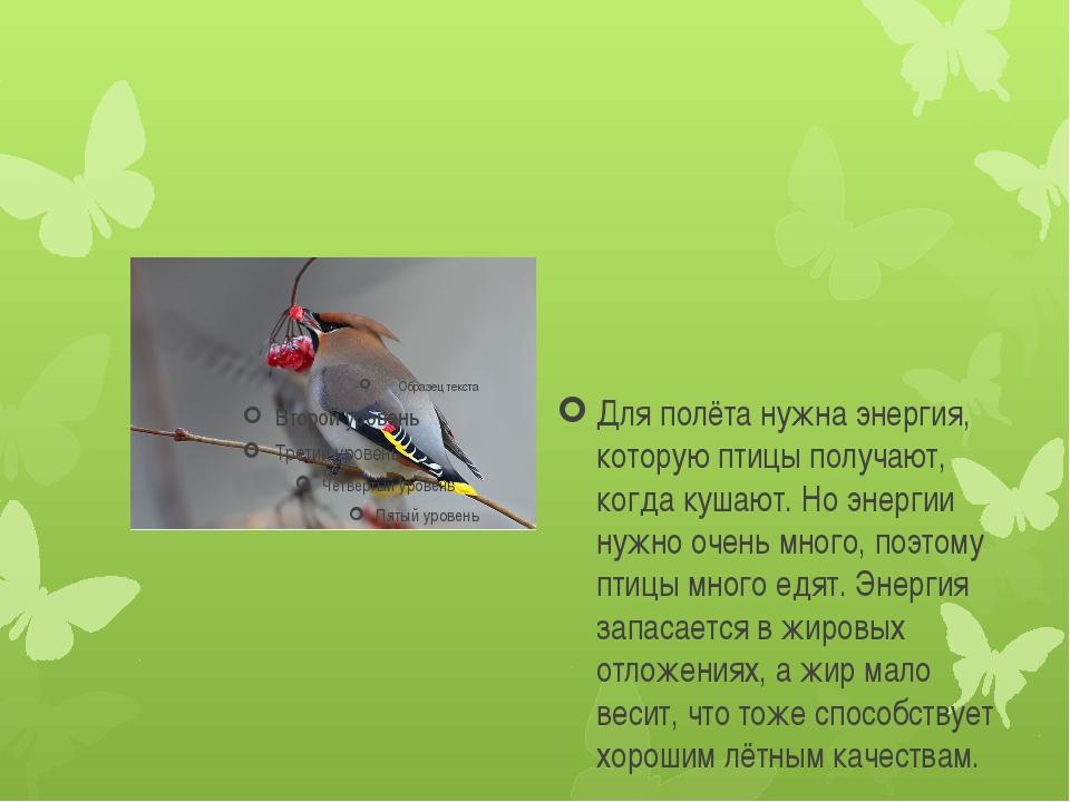 Для полёта нужна энергия, которую птицы получают, когда кушают. Но энергии н...
