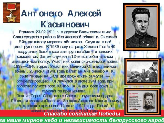 Спасибо солдатам Победы за наше мирное небо и независимость белорусского наро...