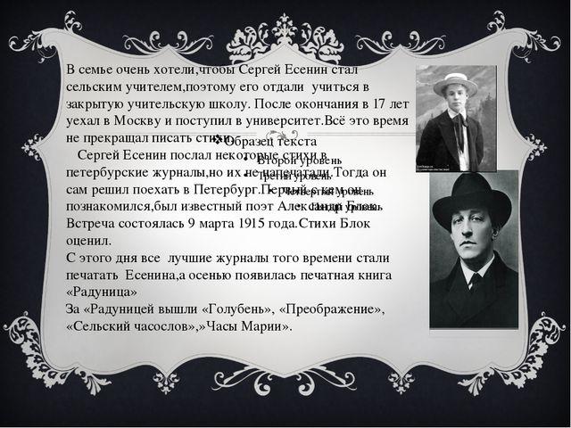 В семье очень хотели,чтобы Сергей Есенин стал сельским учителем,поэтому его...
