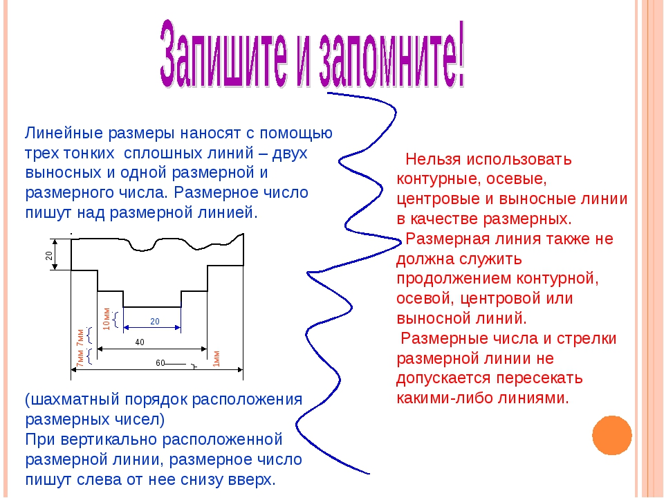 Линейные размеры наносят с помощью трех тонких сплошных линий – двух выносных...