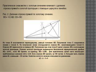 Практическое знакомство с золотым сечением начинают с деления отрезка прямой