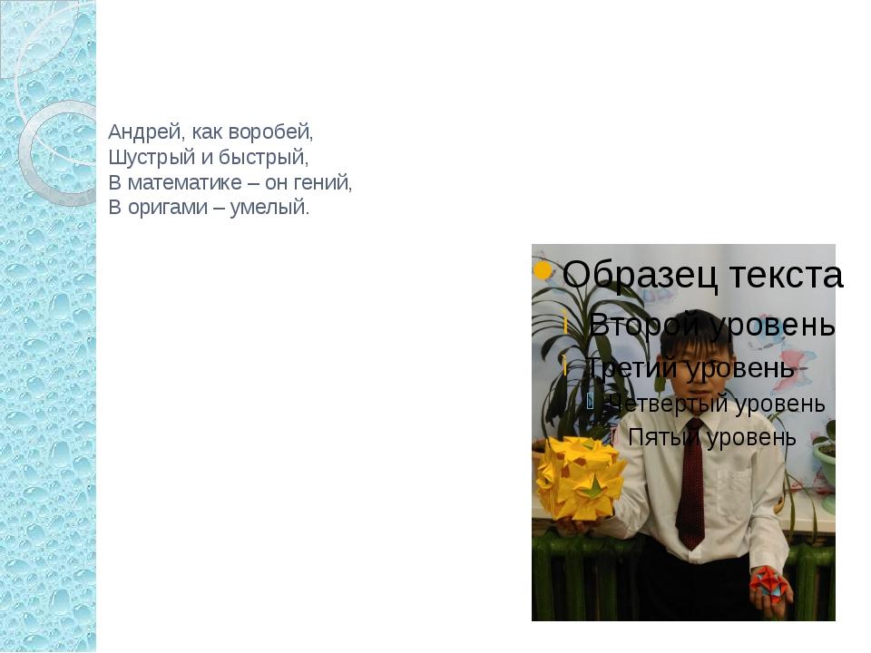 Андрей, как воробей, Шустрый и быстрый, В математике – он гений, В оригами –...