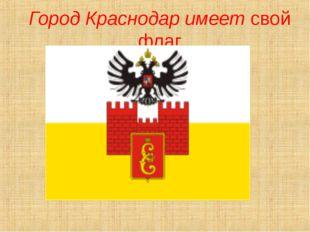 Город Краснодар имеет свой флаг