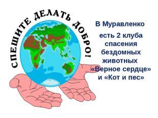 В Муравленко есть 2 клуба спасения бездомных животных «Верное сердце» и «Кот