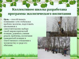 Коллективом школы разработана программа экологического воспитания Цель – спос