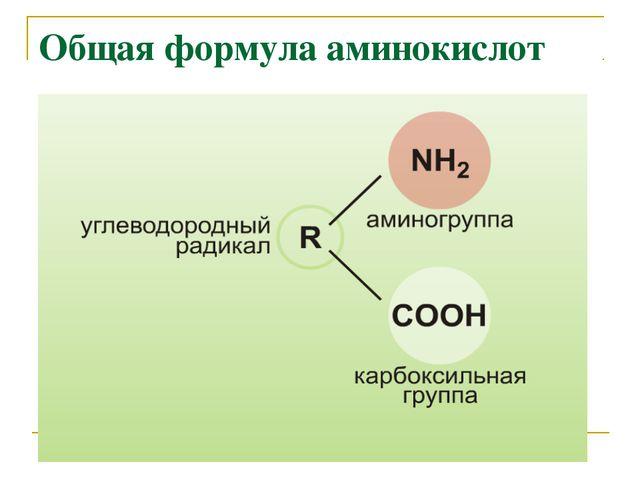 Общая формула аминокислот