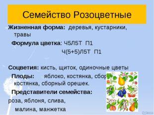 Семейство Розоцветные Жизненная форма: деревья, кустарники, травы Формула цве