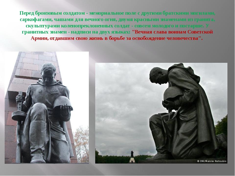 Перед бронзовым солдатом - мемориальное поле с другими братскими могилами, са...