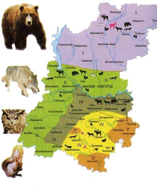 http://www.bibl.nngasu.ru/ecology/expo/zapovedniki/map2.png