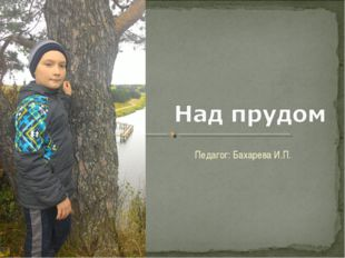 Педагог: Бахарева И.П.