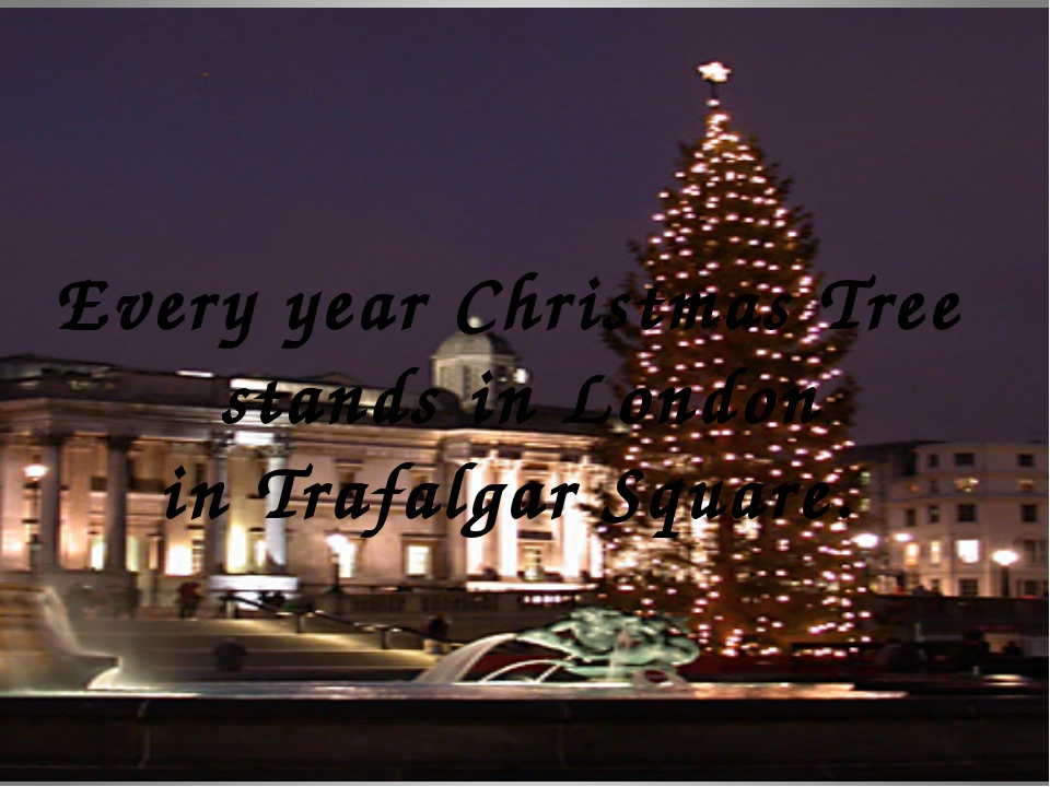Every year Christmas Tree stands in London in Trafalgar Square.