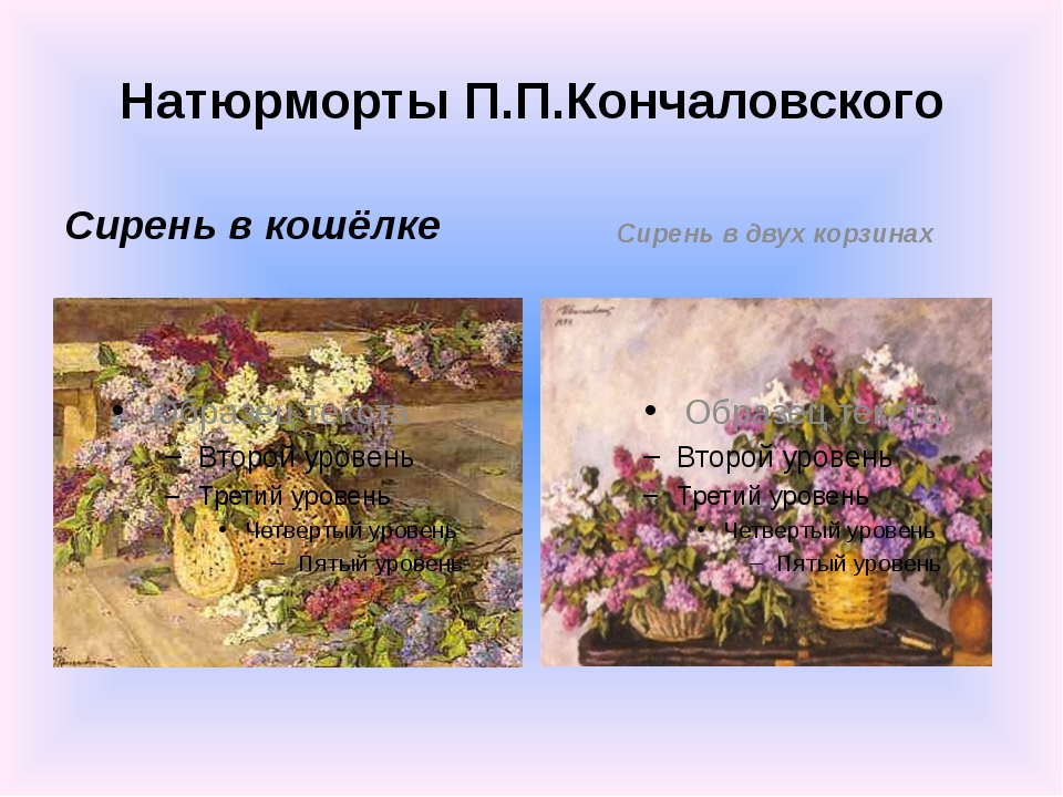 Натюрморты П.П.Кончаловского Сирень в кошёлке Сирень в двух корзинах
