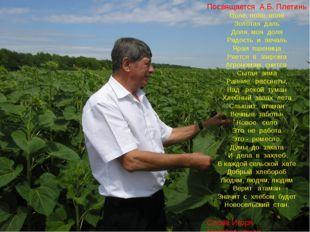Посвящается А.Б. Плетинь Поле, поле, поле Золотая даль Доля, моя доля Радост