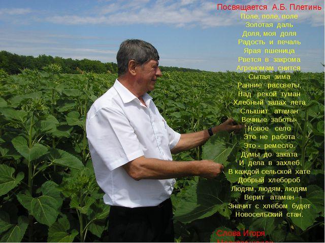Посвящается А.Б. Плетинь Поле, поле, поле Золотая даль Доля, моя доля Радост...
