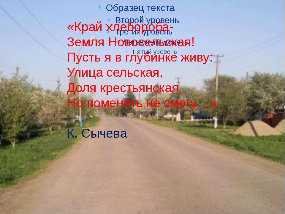 «Край хлебороба- Земля Новосельская! Пусть я в глубинке живу: Улица сельская...
