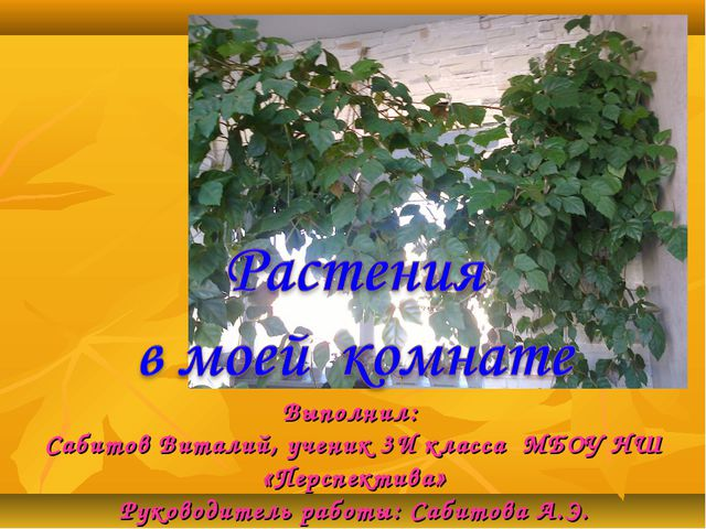 Выполнил: Сабитов Виталий, ученик 3И класса МБОУ НШ «Перспектива» Руководител...