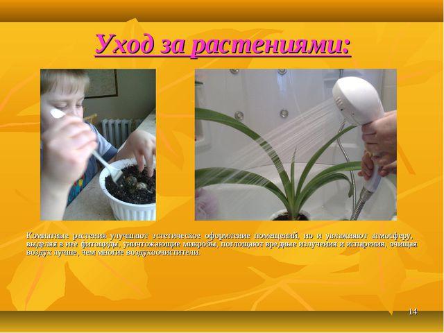 Уход за растениями: * Комнатные растения улучшают эстетическое оформление пом...