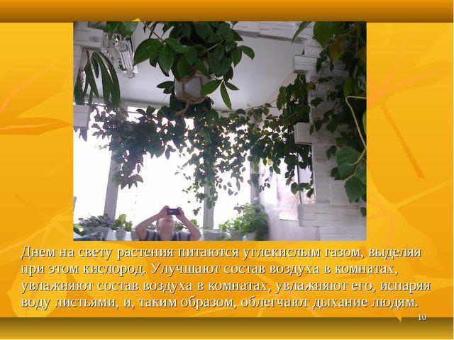 * Днем на свету растения питаются углекислым газом, выделяя при этом кислород...