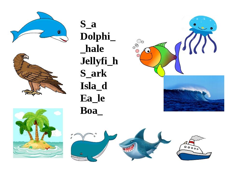 S_a Dolphi_ _hale Jellyfi_h S_ark Isla_d Ea_le Boa_
