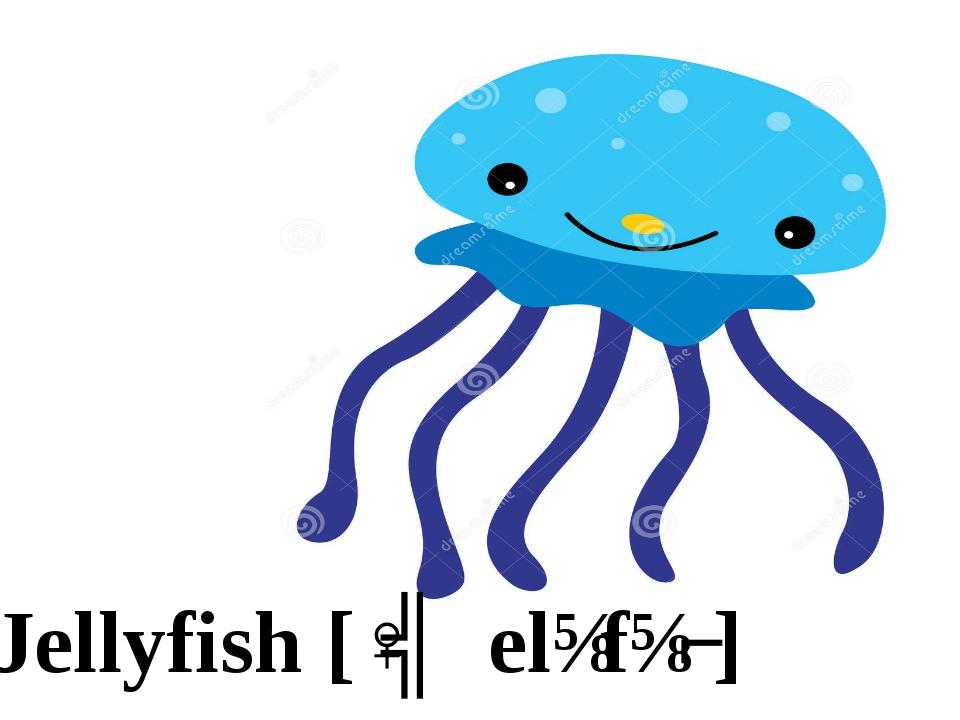 Jellyfish [ˈʤelɪfɪʃ]