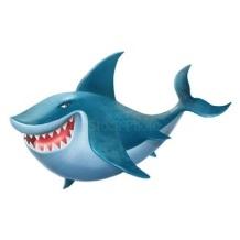 C:\Users\Gim5\Desktop\Открытый урок 4 класс\look the sea 1 lesson\sea\shark.jpg