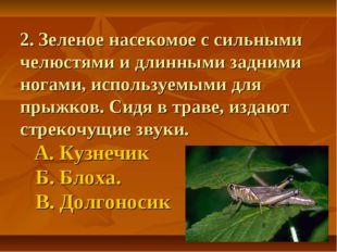 2. Зеленое насекомое с сильными челюстями и длинными задними ногами, использу