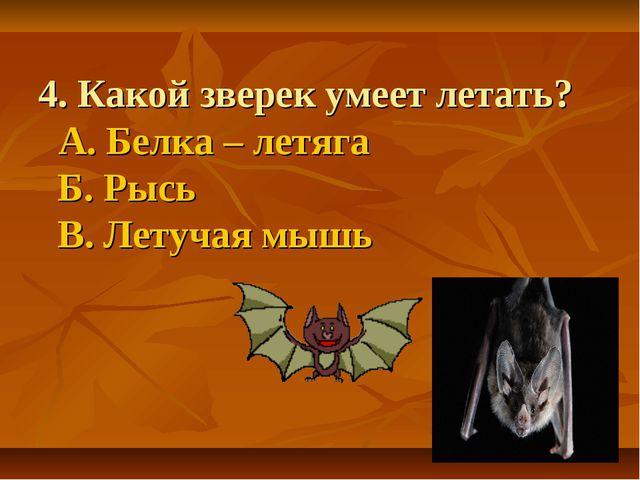 4. Какой зверек умеет летать? А. Белка – летяга Б. Рысь В. Летучая мышь