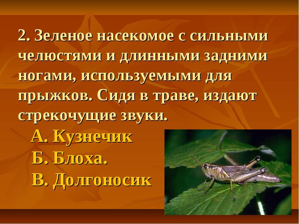 2. Зеленое насекомое с сильными челюстями и длинными задними ногами, использу...