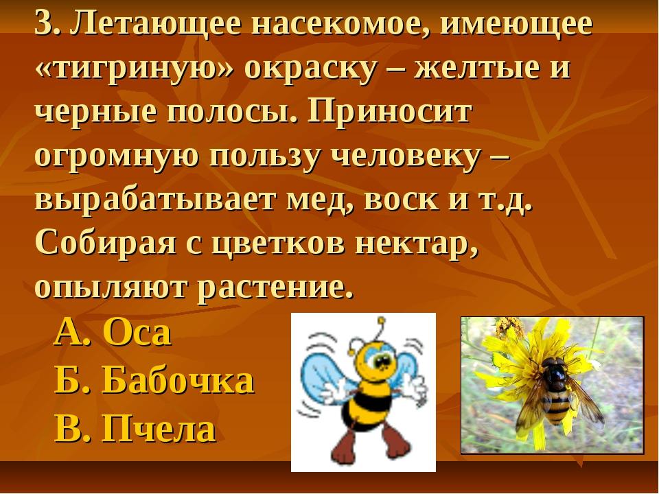 3. Летающее насекомое, имеющее «тигриную» окраску – желтые и черные полосы. П...