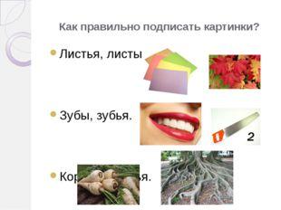 Как правильно подписать картинки? Листья, листы. Зубы, зубья. Корни, коренья.