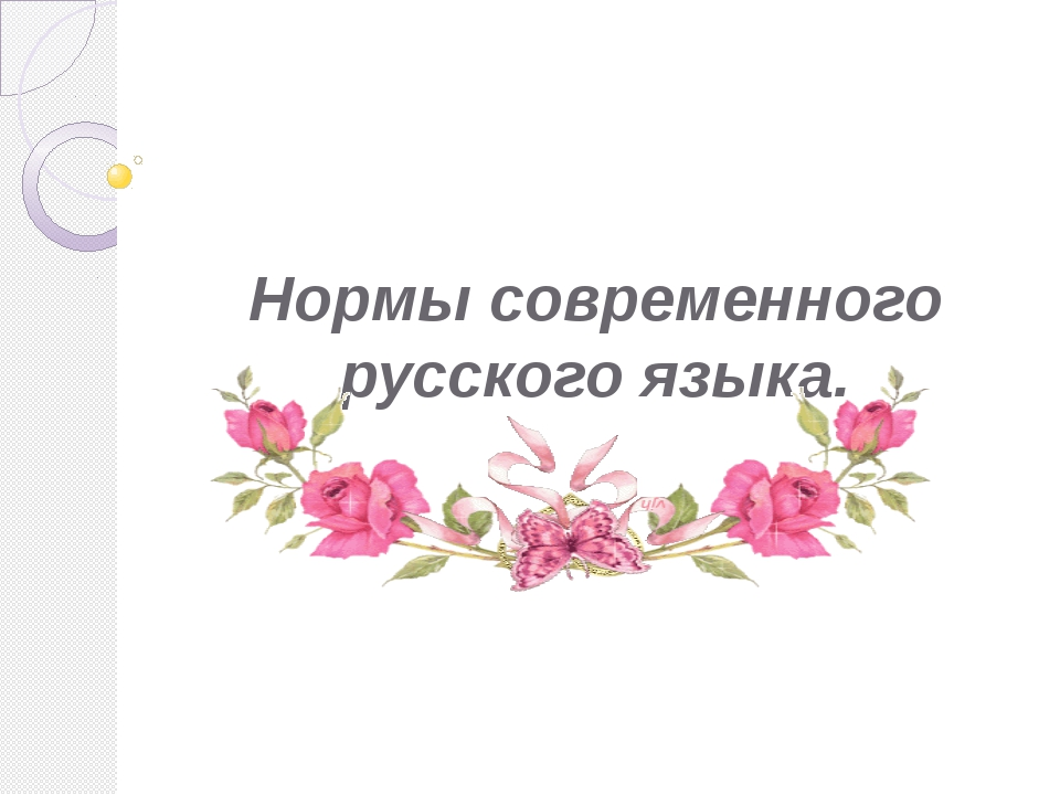 Нормы современного русского языка.