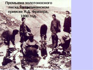 Промывка золотоносного песка на Ципиканском прииске Я.Д. Фризера, 1900 год.