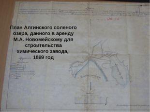 План Алгинского соленого озера, данного в аренду М.А. Новомейскому для строит