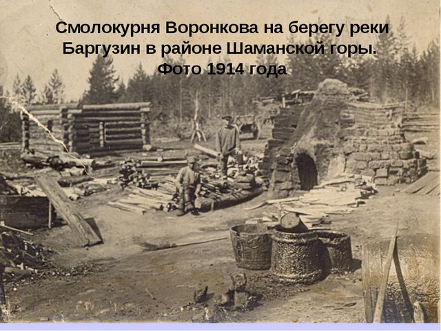 Смолокурня Воронкова на берегу реки Баргузин в районе Шаманской горы. Фото 19...