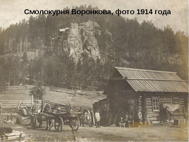 Смолокурня Воронкова, фото 1914 года