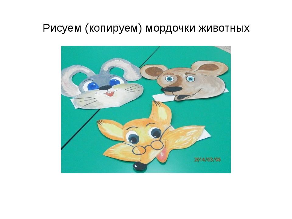 Рисуем (копируем) мордочки животных
