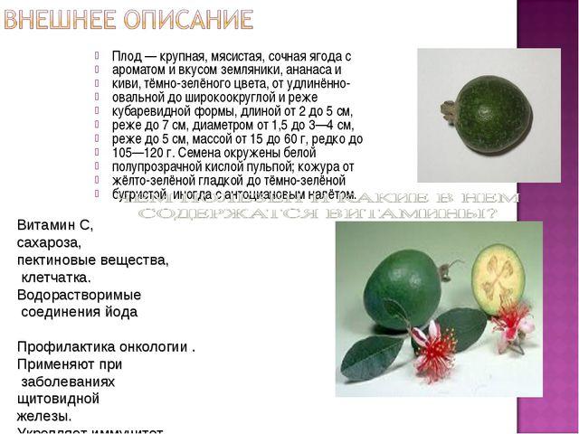 Плод— крупная, мясистая, сочная ягода с ароматом и вкусом земляники, ананаса...