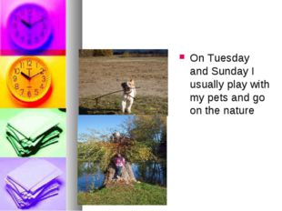 On Tuesday and Sunday I usually play with my pets and go on the nature