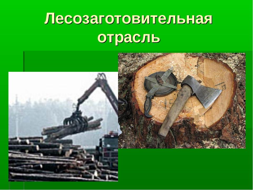 Лесозаготовительная отрасль