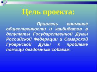 Цель проекта: Привлечь внимание общественности и кандидатов в депутаты Госуда