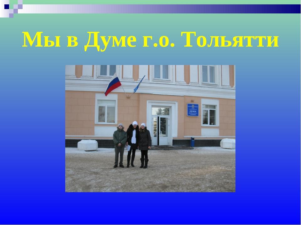 Мы в Думе г.о. Тольятти