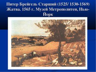 Питер Брейгель Старший (1525/ 1530-1569) Жатва. 1565 г. Музей Метрополитен, Н