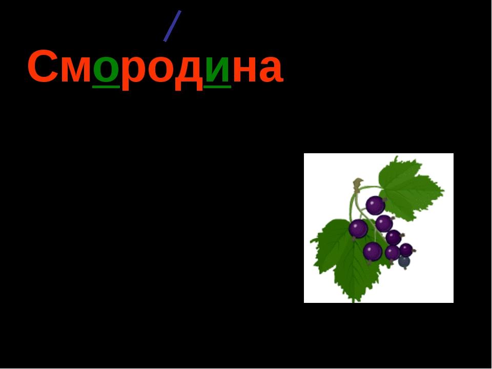 Смородина (какая?) чёрная, красная, пахучая, душистая, круглая, спелая…