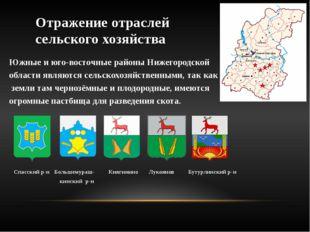 Отражение отраслей сельского хозяйства Южные и юго-восточные районы Нижегород