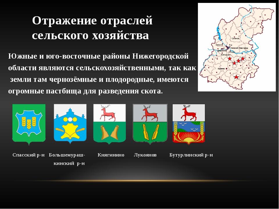 Отражение отраслей сельского хозяйства Южные и юго-восточные районы Нижегород...