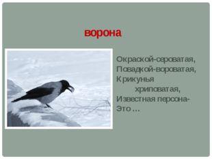 ворона Окраской-сероватая, Повадкой-вороватая, Крикунья хриповатая, Известная