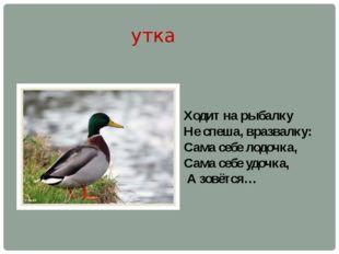 утка Ходит на рыбалку Не спеша, вразвалку: Сама себе лодочка, Сама себе удочк