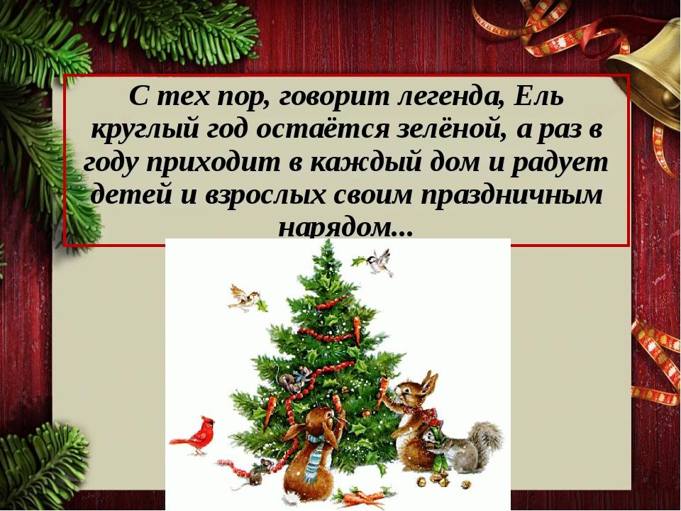 С тех пор, говорит легенда, Ель круглый год остаётся зелёной, а раз в году пр...